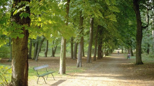 City park, Bois de Boulogne (Credit: Credit: Age fotostock / Alamy Stock Photo)