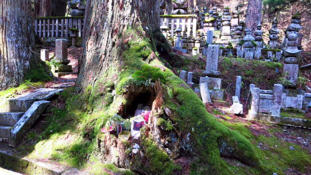 Okunoin is Japan's biggest cemetery at 2km long (Credit: Credit: Adam H. Graham)