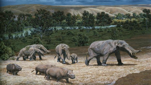 Earth was very different in the Pliocene (Credit: Tom McHugh/Science Photo Library)