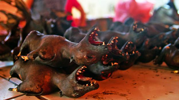 Bats are among the culinary offerings at Tomohon Market (Credit: Credit: Theodora Sutcliffe)