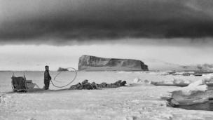 "A study of genetic sequences sheds light on the settling of the North American Arctic, from ancient ""Paleo-Eskimos"" to the modern-day Inuit."