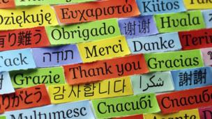 A thriving economy can lead to the extinction of some languages, scientists believe.