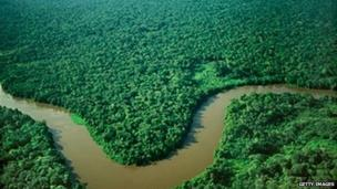 Construction has begun on a giant observation tower in the heart of the Amazon basin in Brazil to monitor climate change.