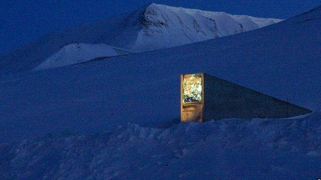 "The Svalbard ""Doomsday"" seed vault, which protects the world's food crops, accepts its first consignment of seeds from forest tree species."