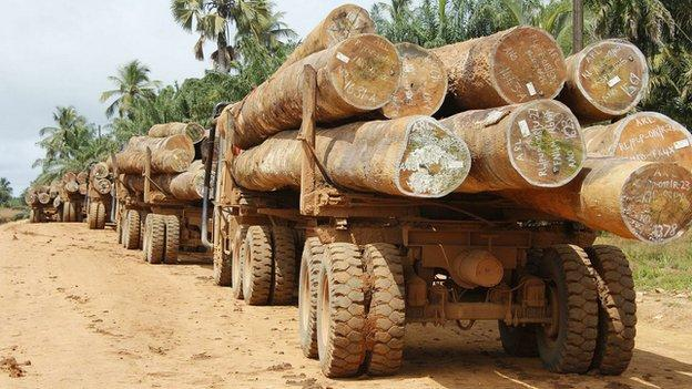 Liberia is to become the first nation in Africa to completely stop cutting down its trees in return for development aid.