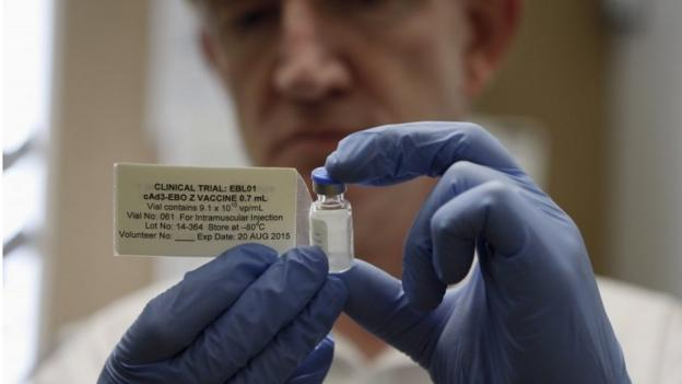 One million doses of an Ebola vaccine will be produced by the end of 2015, the World Health Organization has announced.