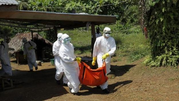 The number of cases in the Ebola outbreak passes 10,000, with 4,922 deaths, the World Health Organization's latest report says.