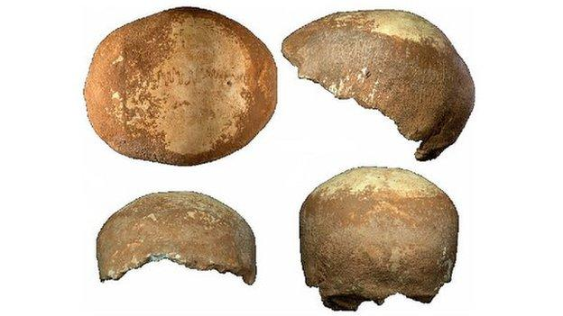 An ancient skull discovered in Israel could shed light on the migration of modern humans out of Africa some 60,000 years ago.