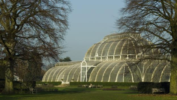 "The government's financial management of Kew Gardens is a ""recipe for failure"", a Select Committee report warns."