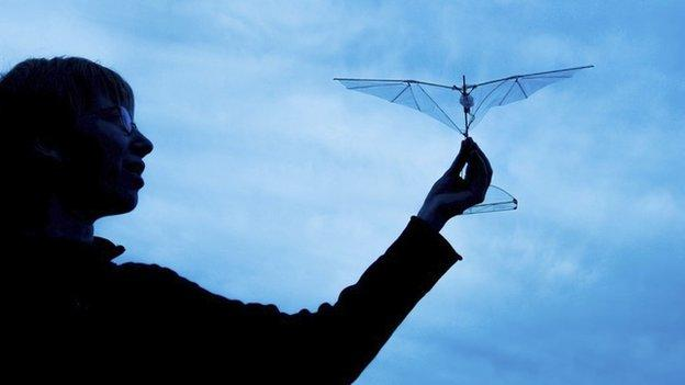 Researchers in the US copy bird and bat wings to build a drone that can rebound and recover from mid-air collisions.