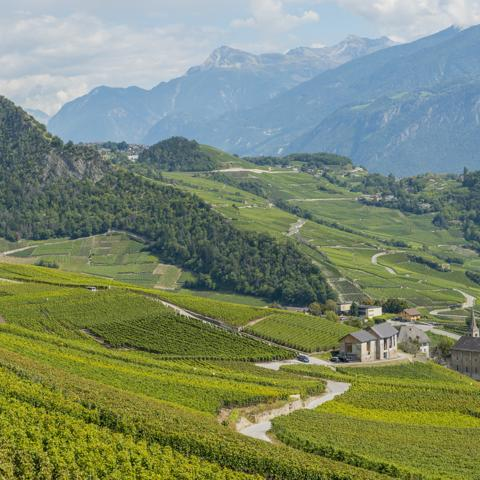 Rhone Valley, Switzerland (Credit: Credit: Karl Thomas/Getty Images)