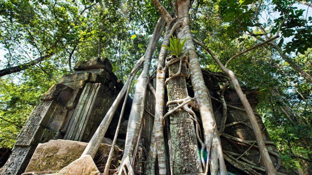 Cambodia's hidden jungle temple