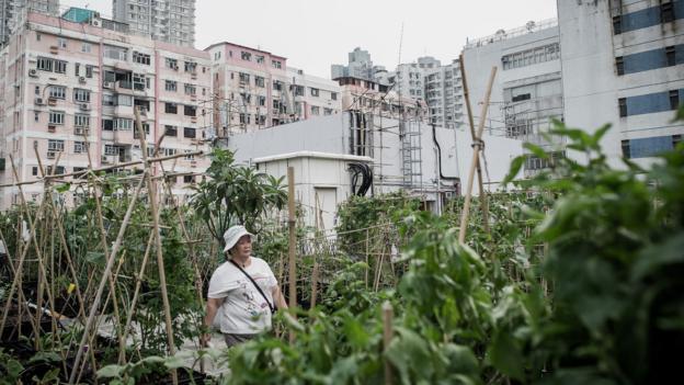 Bbc Future An Inside View Of Hong Kong S Hidden