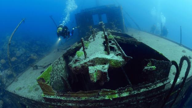 A new life for Bermuda's shipwrecks?