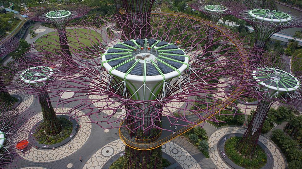 GBB-Gardens-supertree-grove-solar-energy