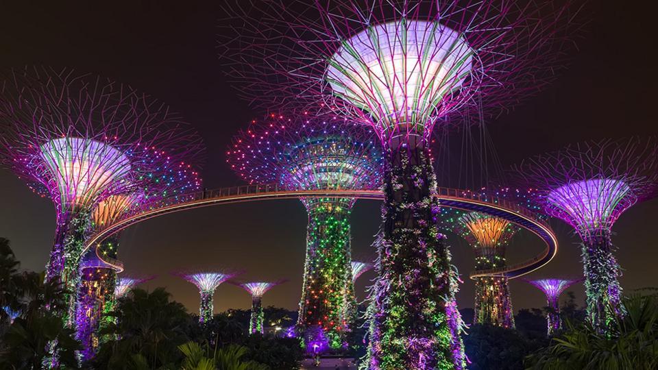 GBB-Gardens-supertree-grove-night.jpg