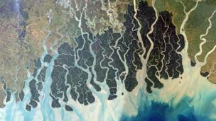Sundarbans (Copyright: Nasa)