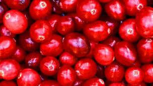 Does cranberry juice stop cystitis?
