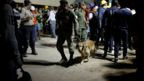 A solider with a sniffer dog at the Enrique Rébsamen primary school in Mexico City, 19 September