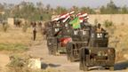 Iraqi army vehicles on the outskirts of Falluja