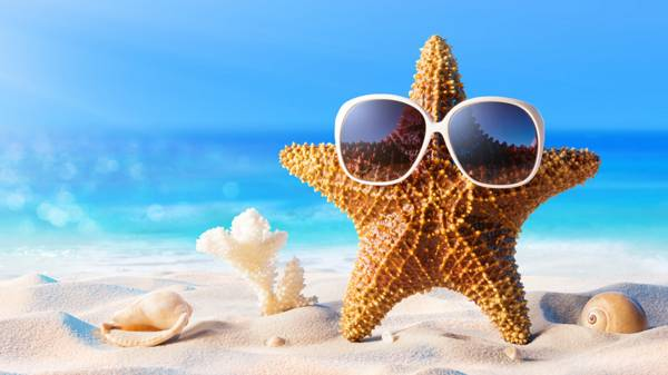 10 Fun Things To Do In The Sunshine Cbbc Bbc