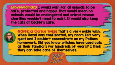 Zapchat replies: From lovelyllama28: I would wish for all animals to be safe, protected and happy. That would mean we would no animals would be endangered and animal rescue charities wouldn't need to exist. It would also keep the cats at Cackles safe From Clarice: That\u2019s a very noble wish. When Hazel was confiscated for a week last year, my room felt very quiet and I couldn\u2019t concentrate on my Potions homework. Did you know witches have used cats as their familiars for hundreds of years. I think they can take care of themselves.