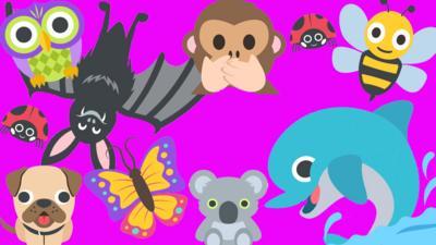 CBBC HQ - Quiz: Amazing animal facts