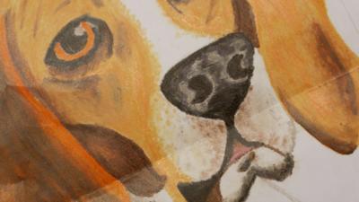 Blue Peter - Post of the Week: Henry crayon art