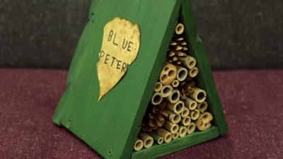 Blue Peter - Post of the Week: Bug hotel