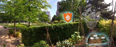 A panoramic shot of the Blue Peter garden.