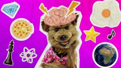 CBBC HQ - Ask Hacker's Brain