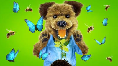 CBBC HQ - Send us your Green Tips and Tricks!