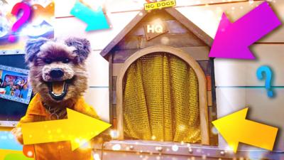 CBBC HQ - What's in Hacker's kennel?