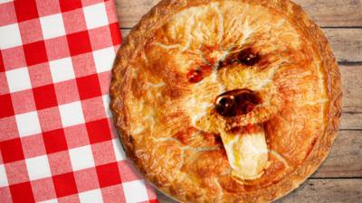 CBBC HQ - Quiz: Whose pie face is this?