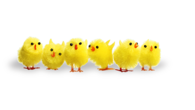 Six toy yellow chicks are lined up in a row to represent Easter.