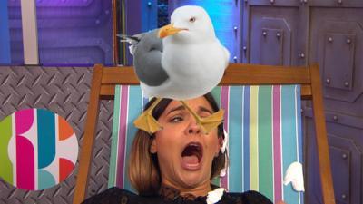CBBC HQ - The seagull game highlights