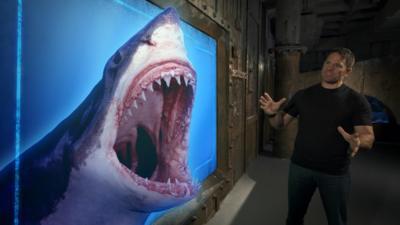 Shark Bites - Shark Bites Top Sharks Vote: Results