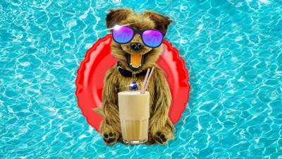 CBBC HQ Summer Send Ins