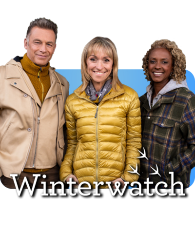 Chris, Michaela and Gillian; the presenters of Winterwatch.