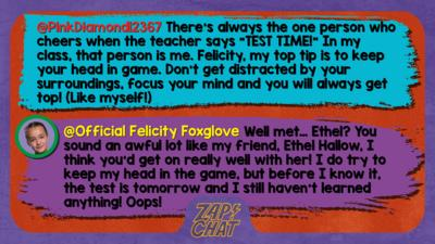 Zapchat replies: PinkDiamond12367: There's always the one person who cheers when the teacher says \u201CTEST TIME!\u201D In my class, that person is me. Felicity, my top tip is to keep your head in game. Don\u2019t get distracted by your surroundings, focus your mind and you will always get top! (Like myself!) Official Felicity Foxglove: Well met\u2026 Ethel? You sound an awful lot like my friend, Ethel Hallow, I think you\u2019d get on really well with her! I do try to keep my head in the game, but before I know it, the test is tomorrow and I still haven\u2019t learned anything! Oops!