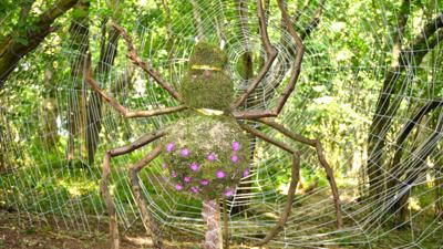 Giant spider and web created in a forest with sticks.