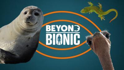 Beyond Bionic - Beyond Bionic: Mega Quiz