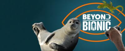 The Beyond Bionic logo with a seal, ostrich and gecko.