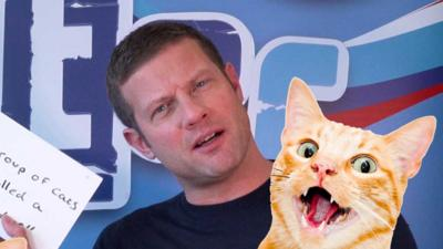Blue Peter - Dermot O'Leary takes a cat quiz