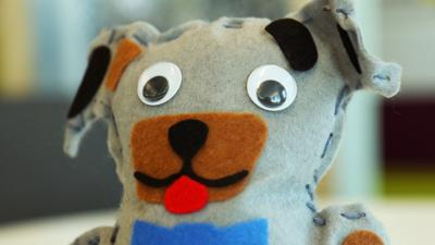 Blue Peter - Post of the Week: Dog Teddy