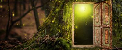 A secret door, hidden in a tree.