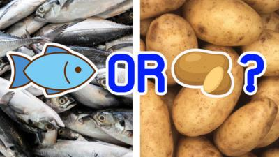 Blue Peter - Do you know your fish and chips?