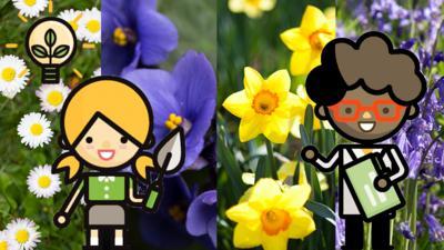 Blue Peter - Flower quiz: Are you a secret botanist?