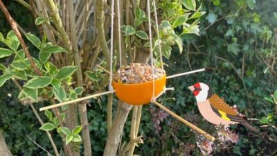 Blue Peter - Make a fruity bird feeder