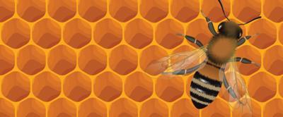 Illustrated honeybee on honeycomb